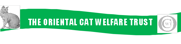Oriental Cat Welfare Trust